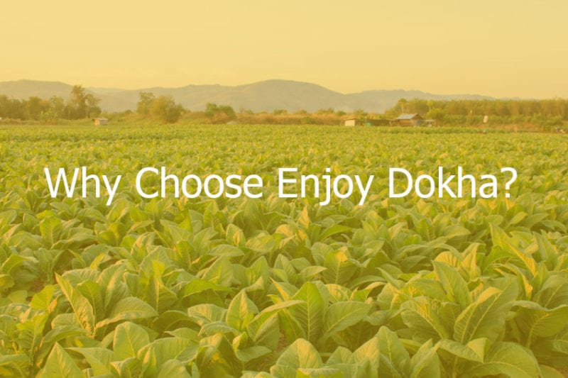 Why Choose Enjoy Dokha? Dokha Tobacco, Medwakh Pipes in the UK and Europe Dokha Online